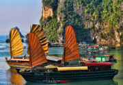 Ha Long Posters - Vietnam Sails Poster by Chuck Kuhn