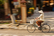 Cycling Pyrography Posters - Vietnamese Woman Riding A Bicycle Poster by Panya Jampatong