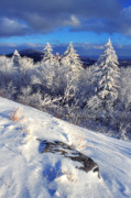 Snow Covered Pine Trees Prints - View along Highland Scenic Highway Print by Thomas R Fletcher