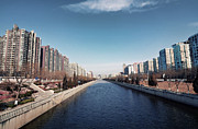 View Down Canal Print by Andy Brandl