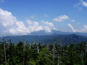 Gatlinburg Posters - View From Clingmans Dome Poster by Nancy Mueller
