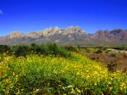 Desert Digital Art - View from Dripping Springs Rd by Kurt Van Wagner