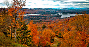 Evergreen Trees Photo Posters - View From McCauley Mountain II Poster by David Patterson