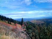 Jerry Browning - View from Mt.Spokane