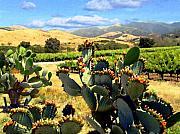 Kurt Van Wagner - View from Santa Rosa Road