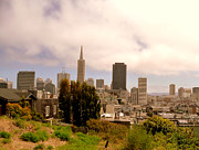 San Francisco Metal Prints - View From Telegraph Hill, San Francisco Metal Print by Federica Gentile