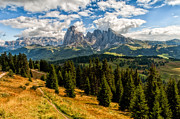 Alm Framed Prints - View From The Seiser Alm In The Dolomites Framed Print by Roy Jankowski