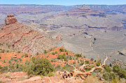 South Kaibab Trail Prints - View from the South Kaibab Trail II Print by Julie Niemela