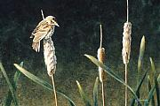Cattail Paintings - View from the Top by Janet Landrum