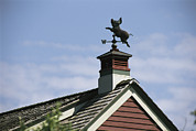Chatham Prints - View Of A Flying Pig Weathervane Print by Darlyne A. Murawski