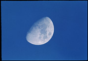 Gibbous Moon Prints - View Of A Gibbous Moon Print by David Nunuk