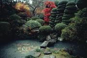 Honshu Posters - View Of A Private Garden And Koi Pond Poster by Sam Abell