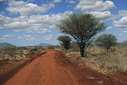 Dirt Roads Photo Metal Prints - View Of A Red Earth Road In Tsavo West Metal Print by Marc Moritsch