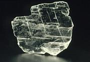 View Of A Sample Of Selenite, A Form Of Gypsum Print by Kaj R. Svensson