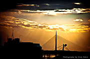 Uros Zunic Metal Prints - View of Belgrade Metal Print by Uros Zunic