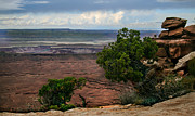 Canyonland Prints - View of Canyonland Print by Robert Bales