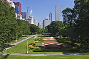 Illinois Flower Prints - View of Downtown Chicago from Grant Park Print by Jeremy Woodhouse