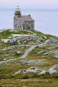 Featured Metal Prints - View Of Lighthouse, Rose Blanche Metal Print by Yves Marcoux