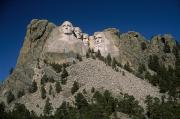 Stone Carvings Prints - View Of Mount Rushmore Over The Tree Print by Marcia Kebbon