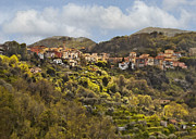 Italian Village Prints - View of Pietralba Print by Sharon Foster