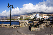 Canary Metal Prints - View of Puerto de la Cruz from Plaza de Europa Metal Print by Fabrizio Troiani