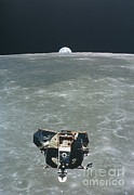Spaceflight Art - View Of The Apollo 11 Lunar Module by NASA / Science Source