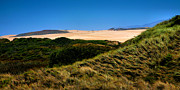 Sand Dunes Framed Prints Framed Prints - View Of The Dunes Framed Print by Steven Ainsworth