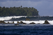 Kosrae Island Prints - View Of The Rugged Coast Of Kosrae Print by Tim Laman