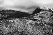 View Of The Summit Of Ben Nevis Snow Capped And Shrouded In Mist In Spring Near Fort William Scotlan Print by Joe Fox