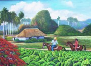 Del Rio Paintings - Vinales farm by Miguel Alfaro