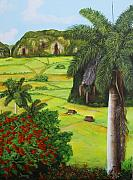 Vin Painting Prints - Vinales Valley Print by Dominica Alcantara
