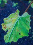 Grape Leaf Framed Prints - Vine Leaf Framed Print by Pamela Wilson