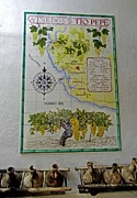 Grape Leaf Prints - Vinedos Tio Pepe - Jerez de la Frontera Print by Juergen Weiss
