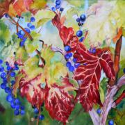 Grapevine Originals - Vines in the fall by Nadine Dennis