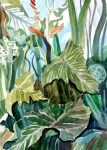 Botanical Drawings - Vines by Mindy Newman