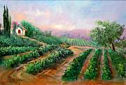 Italian Wine Painting Originals - Vineyard Haven by Sally Seago