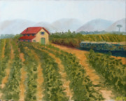 Tuscany Vineyard Oil Paintings - Vineyard Landscape Oil Painting by Mark Webster