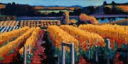 Red Wine Painting Prints - Vineyard Light Print by Christopher Mize