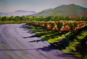 Napa Valley Vineyard Paintings - Vineyard Shadows by Becky Chappell