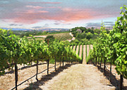 Vineyard Landscape Digital Art Prints - Vineyard View Print by Sharon Foster