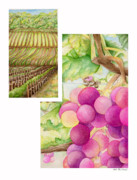 Malbec Paintings - Vineyard3 by TR ODell