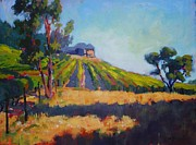 Wineries Painting Prints - Vineyards at Sarver Print by Margaret  Plumb