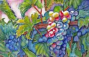 Wine Vineyard Paintings - VIno Veritas II by June Conte  Pryor