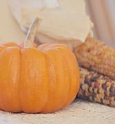 Kim Hojnacki - Vintage Autumn Harvest