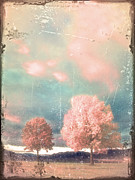 Aging Photos - Vintage Autumn Sunset by Tara Turner