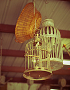 Baskets Photos - Vintage Birdcages by Sonja Quintero