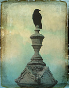 Crow Image Prints - Vintage Blue Print by Gothicolors And Crows