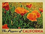 Orange Flower Digital Art Framed Prints - Vintage California Poppies Framed Print by Vintage Poster Designs