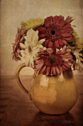Flowers Gerbera Photos - Vintage Gerbera by LeAnne Thomas