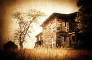 Abandoned Houses Photo Metal Prints - Vintage Gold Metal Print by Emily Stauring